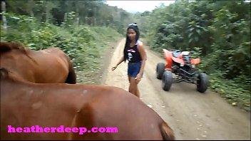 uncensored horse animated Premium tv etv free liveshow eva
